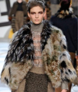 Holiday 2012 Trend Research: Influences - Tundra